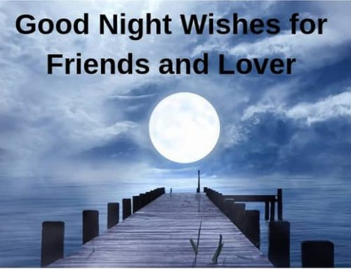 35 Good Night Wishes for Friends and Lover 2019